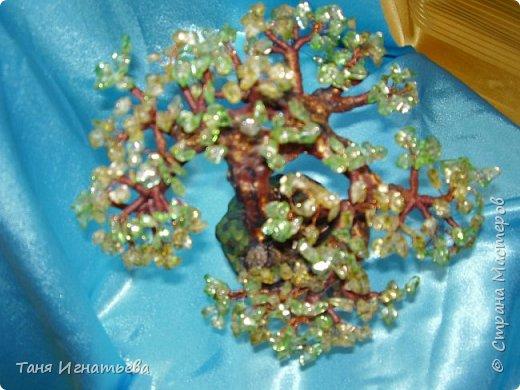 Сделала вот такой зелёный бонсай из каменного скола. Делала давно, поэтому качество фоток не очень. фото 5