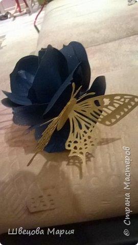Открытка тюльпаны с бабочкой фото 4