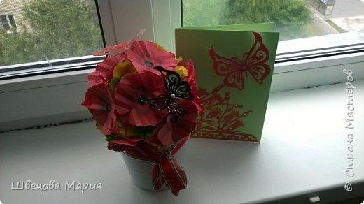 Открытка тюльпаны с бабочкой фото 16