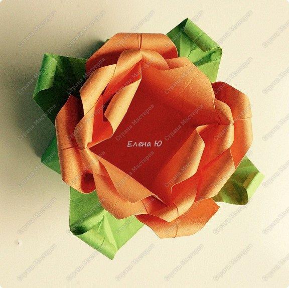 Мне очень понравился МК аllasol о том, как сделать тюльпаны оригами: http://stranamasterov.ru/node/1014736?c=favorite Пион получается из двух тюльпанов. Размер бумаги для тюльпанов: 20*20 см  и 19.5*19,5 см. фото 4