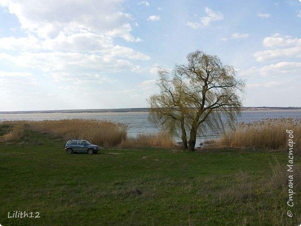 По семейным обстоятельствам пришлось провести месяц в г.Таганроге. И да, весна на юге куда интереснее нашей тюменской весны. На фото то, что мне удалось запечатлеть на память. Эта красота от пробуждения природы от зимнего сна. Крокусы, подснежники этого региона, одни из первых цветов, что мне удалось созерцать... фото 2