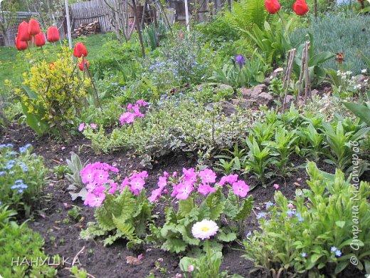 ВСЕМ ДОБРОГО,СОЛНЕЧНОГО,РАДОСТНОГО ВЕСЕННЕГО ДНЯ!!!У нас весна шагает семимильными шагами,каждый день происходит чудо,все цветет,все благоухает.На улице  цветочный рай.Абрикоса и вишня,персик и яблоня радуют нас своим обильным цветением.Цветы на любой цвет и вкус)))И приходит вдохновения творить тоже красоту и радовать себя и вас мои дорогие коллеги.Сплелась у меня шкатулка. фото 17