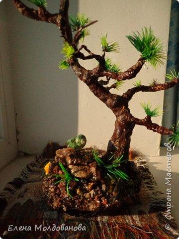 Лёгкое бисерное дерево фото 10