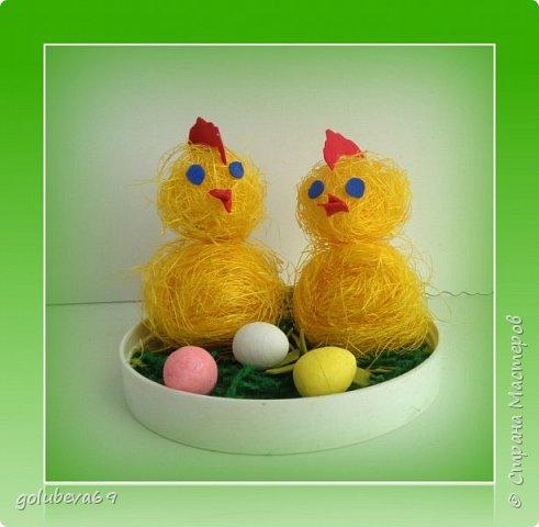 Цыплята из сезаля.