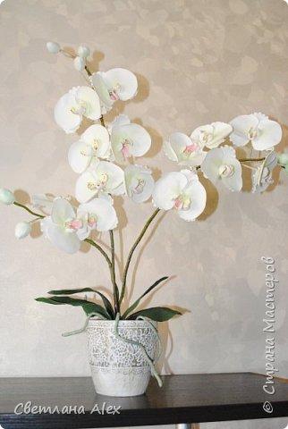 Всем доброго времени суток! Радости нет предела! Закончила орхидею!!! Она получилась такая красивая, сама не ожидала. Высота цветка 60 см. Орхидейка сделана ко дню рождения. Я думаю, понравится. фото 2