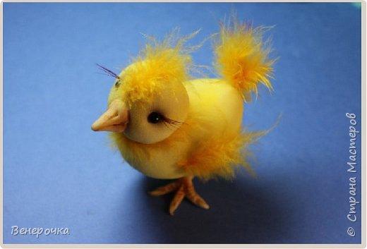 Цыпленок Цыпа из капрона  фото 3