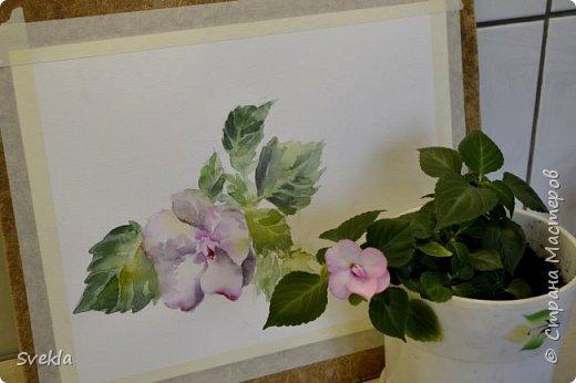 Видео мастер-класс: как нарисовать цветок с натуры двумя способами фото 2