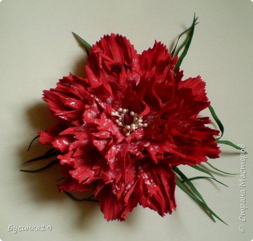 Вишня цветет фото 7