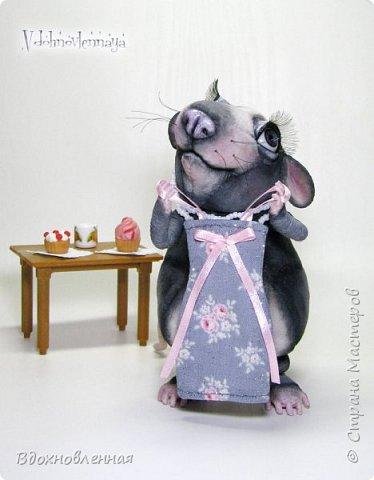 Пришла весна.. Аннушка открыла шкаф с вещами, достала свое любимое платье.. Аннушку ждало разочарование... Так многие из нас встретили весну:-)  Крыса Аннушка  - единственная и неповторимая, очень интересный, многогранный персонаж!  Наверняка, многие могут узнать в этой ситуации себя, когда весной пытались примерить  на себя летние вещи и понимали, что размер любимого платья уже не подходит))  Аннушка пошита по новой авторской выкройке из материала с мелким ворсом - миништофф. Ручки, ножки и хвост имеют проволочный каркас. Платье сшито из хлопковой ткани, украшено атласной лентой. Платье очень красиво блестит, благодаря блесткам! Веки и нос выполнены из натуральной кожи. фото 7