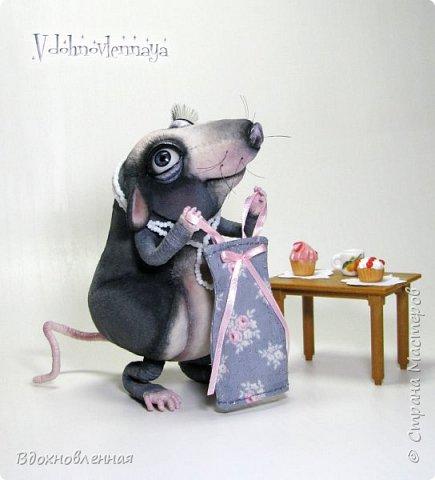 Пришла весна.. Аннушка открыла шкаф с вещами, достала свое любимое платье.. Аннушку ждало разочарование... Так многие из нас встретили весну:-)  Крыса Аннушка  - единственная и неповторимая, очень интересный, многогранный персонаж!  Наверняка, многие могут узнать в этой ситуации себя, когда весной пытались примерить  на себя летние вещи и понимали, что размер любимого платья уже не подходит))  Аннушка пошита по новой авторской выкройке из материала с мелким ворсом - миништофф. Ручки, ножки и хвост имеют проволочный каркас. Платье сшито из хлопковой ткани, украшено атласной лентой. Платье очень красиво блестит, благодаря блесткам! Веки и нос выполнены из натуральной кожи. фото 1