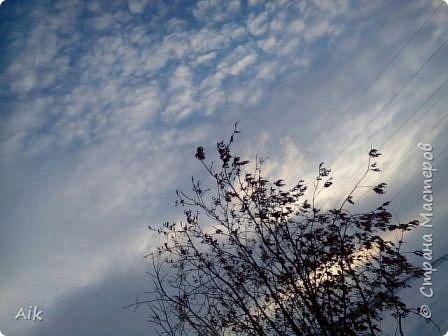 Здравствуйте Всем! С Вербным Воскресением Вас! Мира и Добра в Ваши дома! я к Вам с весенней северной зарисовкой... у всех своя весна: где-то цветут цветы, а у нас вот не тают льды :-)  фото 16