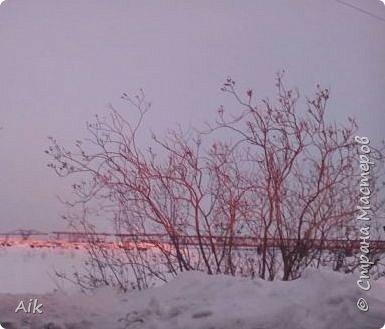 Здравствуйте Всем! С Вербным Воскресением Вас! Мира и Добра в Ваши дома! я к Вам с весенней северной зарисовкой... у всех своя весна: где-то цветут цветы, а у нас вот не тают льды :-)  фото 18