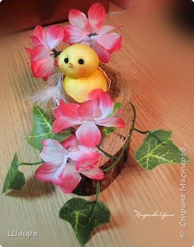 Цыплят наделала http://stranamasterov.ru/node/1022337.  Теперь буду вить гнезда из пакли. Украшать различными цветами и травкой, чтобы у цыплят были красивые домики. фото 1