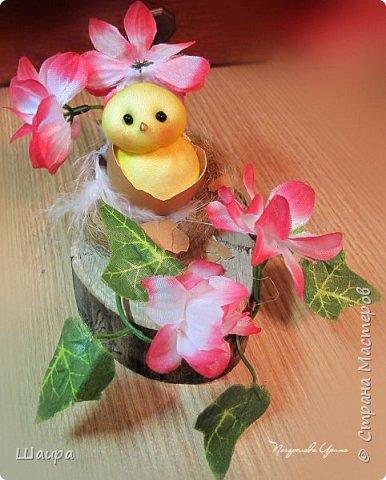 Цыплят наделала http://stranamasterov.ru/node/1022337.  Теперь буду вить гнезда из пакли. Украшать различными цветами и травкой, чтобы у цыплят были красивые домики. фото 5