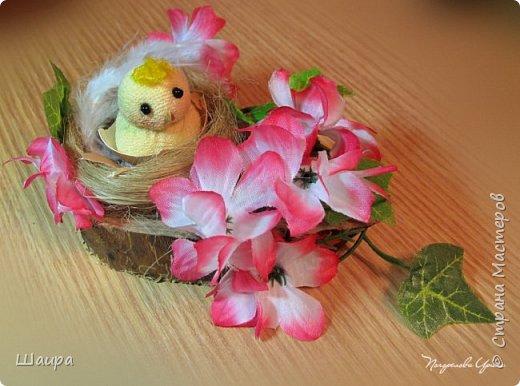 Цыплят наделала http://stranamasterov.ru/node/1022337.  Теперь буду вить гнезда из пакли. Украшать различными цветами и травкой, чтобы у цыплят были красивые домики. фото 6