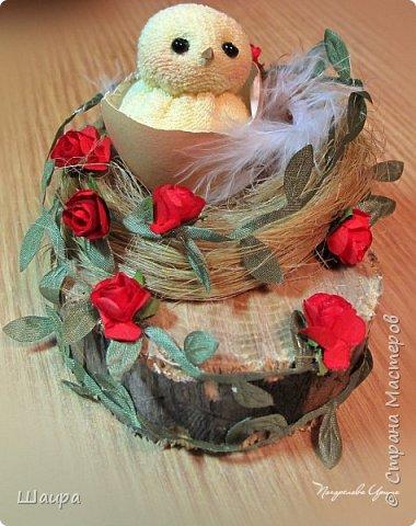 Цыплят наделала http://stranamasterov.ru/node/1022337.  Теперь буду вить гнезда из пакли. Украшать различными цветами и травкой, чтобы у цыплят были красивые домики. фото 8
