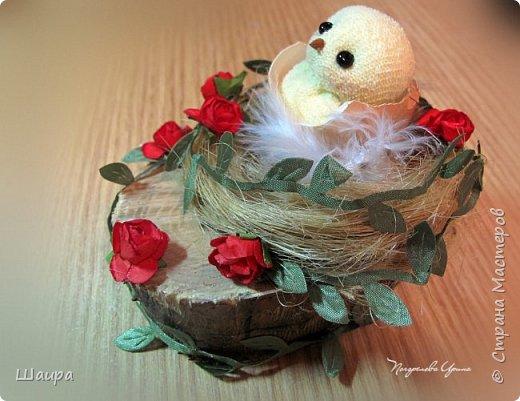 Цыплят наделала http://stranamasterov.ru/node/1022337.  Теперь буду вить гнезда из пакли. Украшать различными цветами и травкой, чтобы у цыплят были красивые домики. фото 7