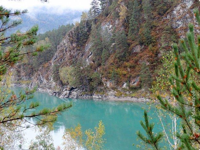 Добрый день всем! Сегодня мы отправимся на новую экскурсию по Горному Алтаю. фото 15