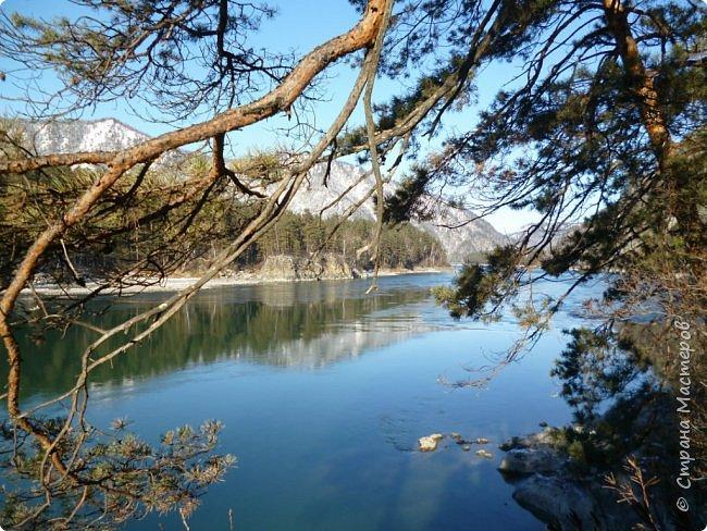 Добрый день всем! Сегодня мы отправимся на новую экскурсию по Горному Алтаю. фото 21