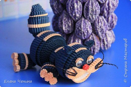 Чеширский кот фото 2
