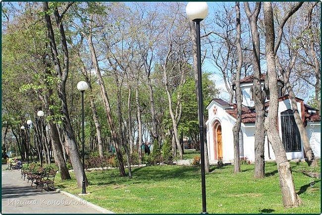 Добрый вечер, предлагаю для просмотра еще фотографии цветущего парка, Прогулка состоялась где-то 15 апреля. Весь парк в цветущих розовых и желтых деревьях. Розовый это индийский люляк. Болгары называют его иудой. А желтая и белая - глицинии (если не ошибаюсь). Еще не отцвели тюльпаны. фото 23