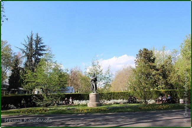 Добрый вечер, предлагаю для просмотра еще фотографии цветущего парка, Прогулка состоялась где-то 15 апреля. Весь парк в цветущих розовых и желтых деревьях. Розовый это индийский люляк. Болгары называют его иудой. А желтая и белая - глицинии (если не ошибаюсь). Еще не отцвели тюльпаны. фото 3