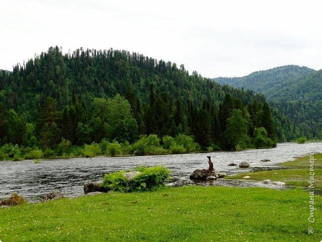 Добрый день всем! Сегодня мы отправимся на новую экскурсию по Горному Алтаю. фото 62