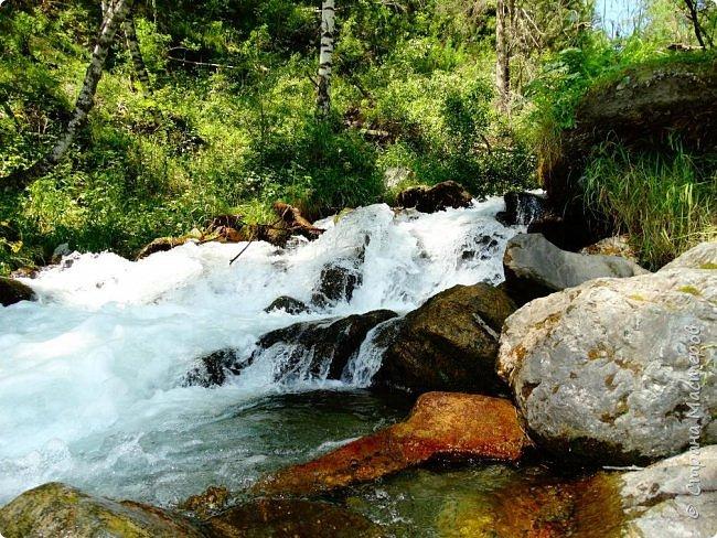 Добрый день всем! Сегодня мы отправимся на новую экскурсию по Горному Алтаю. фото 54