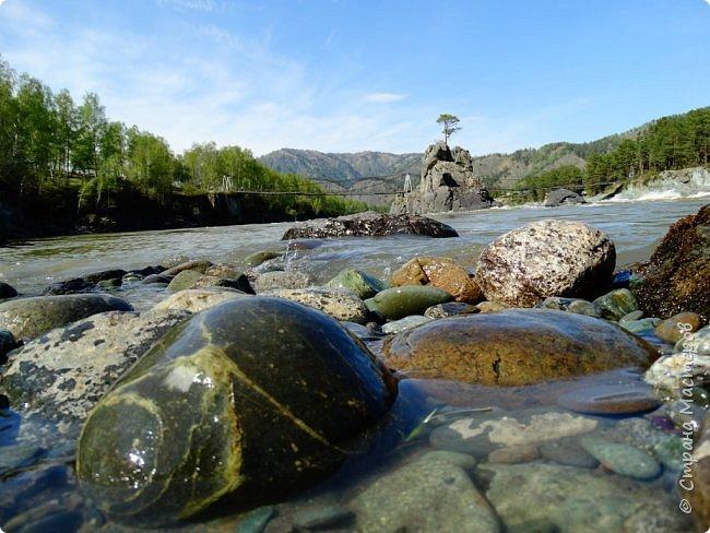 Добрый день всем! Сегодня мы отправимся на новую экскурсию по Горному Алтаю. фото 24