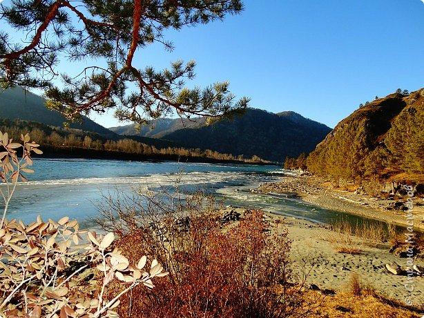 Добрый день всем! Сегодня мы отправимся на новую экскурсию по Горному Алтаю. фото 53