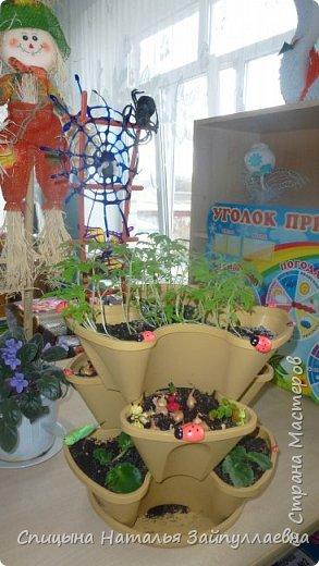 """Это наш проект """"Огород на окне"""". Работа не сложная. Побольше фантазии. Если дома есть дети - доверьтесь им."""