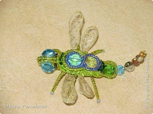 брошь-саламандра фото 5