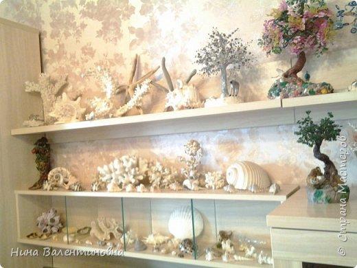 Добрый сутки дорогие жители страны мастеров.Продолжаю растить каменный сад. фото 9