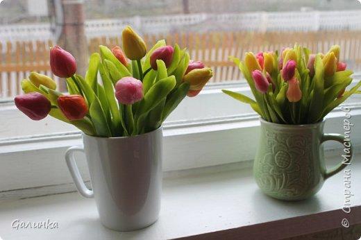 На днях слепилась вот такая семейка тюльпанчиков.Хочется уже тепла и цветов.