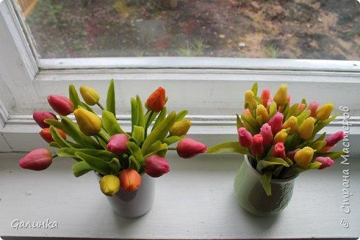 На днях слепилась вот такая семейка тюльпанчиков.Хочется уже тепла и цветов. фото 2