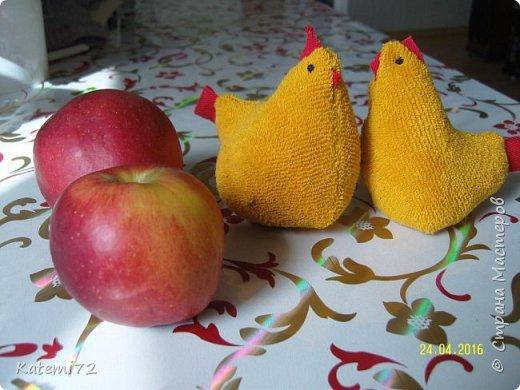 Добрый день! Только недавно выставила своих курочек напоказ (http://stranamasterov.ru/node/1013644) и вот вам результат! Кто- напророчил... Мои курочки принесли вот таких цыпляток. Красота! Такие яркие, шустрые. фото 6