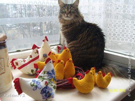 Добрый день! Только недавно выставила своих курочек напоказ (http://stranamasterov.ru/node/1013644) и вот вам результат! Кто- напророчил... Мои курочки принесли вот таких цыпляток. Красота! Такие яркие, шустрые. фото 2