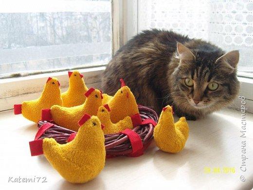 Добрый день! Только недавно выставила своих курочек напоказ (http://stranamasterov.ru/node/1013644) и вот вам результат! Кто- напророчил... Мои курочки принесли вот таких цыпляток. Красота! Такие яркие, шустрые. фото 1