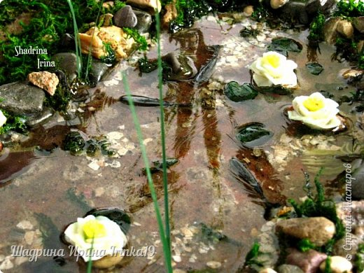 Здравствуйте, дорогие друзья! Недавно поступил мне заказал, сделать лавочку с прудиком (и желательно, чтобы лавочка стояла в камышах) для трёх лягушек:-)  Начала думать, что из чего делать! Камыши сделала из мха, имитацию воды из эпоксидной смолы, лавочка деревянная, лилии из холодного фарфора:-)  Композиция не миниатюрного размера 40х38см:-)   фото 4