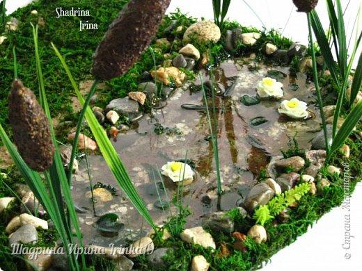 Здравствуйте, дорогие друзья! Недавно поступил мне заказал, сделать лавочку с прудиком (и желательно, чтобы лавочка стояла в камышах) для трёх лягушек:-)  Начала думать, что из чего делать! Камыши сделала из мха, имитацию воды из эпоксидной смолы, лавочка деревянная, лилии из холодного фарфора:-)  Композиция не миниатюрного размера 40х38см:-)   фото 5