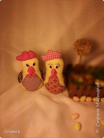 Мой птичий дворик,уж очень надеюсь что петушки не будут устраивать петушиные бои за одну красавицу(а чем не красавица-одни ресницы чего стоят) фото 3