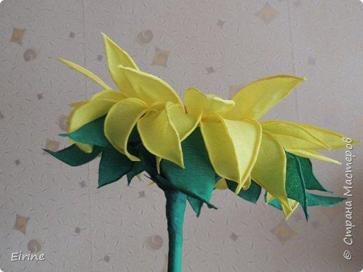 """""""Тюльпаны"""" фото 8"""