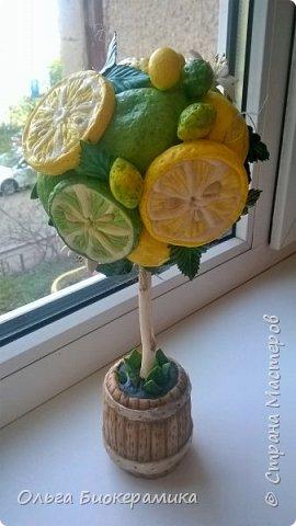 У меня выросло новое солёное деревце :) Думаю, оно будет отлично смотреться в кухне или на застеклённом балконе. фото 3