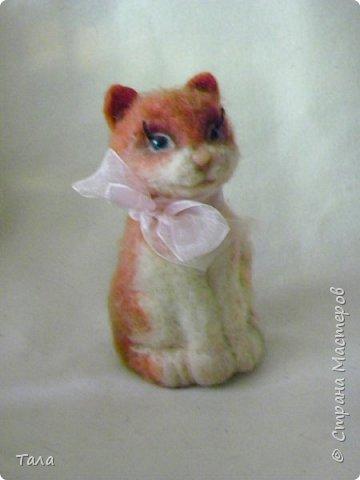 Кошечка  Китти. фото 4