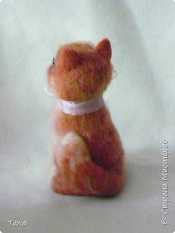Кошечка  Китти. фото 3