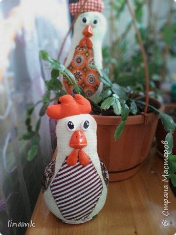 Мой птичий дворик,уж очень надеюсь что петушки не будут устраивать петушиные бои за одну красавицу(а чем не красавица-одни ресницы чего стоят) фото 10