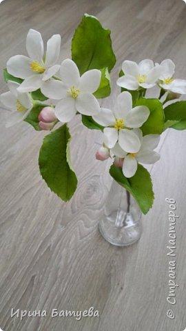Яблоня. Холодный фарфор. фото 1