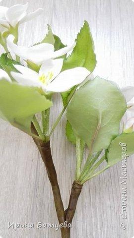 Яблоня. Холодный фарфор. фото 8