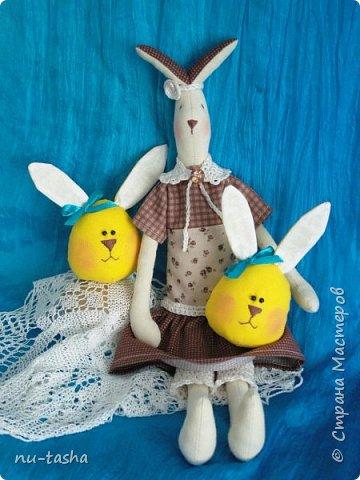 В ожидании Пасхи появилась вот такая яркая компания веселых ребят - яйцезайцев- для малышей в детский сад. А потом и элегантная тонкая Зая. фото 7