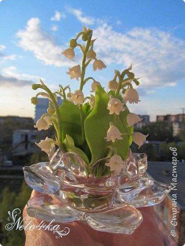 В преддверии цветения ландышей фото 4